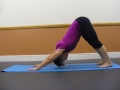 Downward dog 1